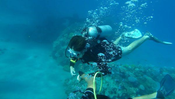 scuba diving jamaica negril scuba dive